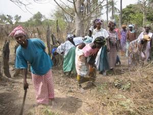 Vrouwen in Macouda maken het terrein gereed