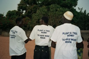 Plant a tree now