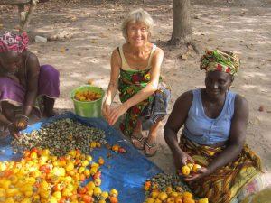 Willemien helpt bij de cashew oogst